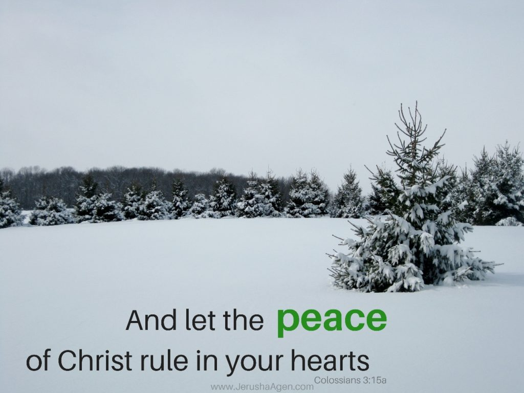 christmas-peace-colossians3-15-1280x960