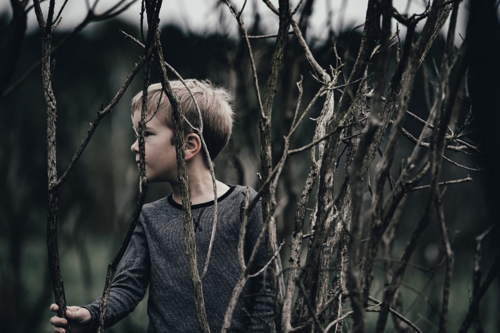 child-boy-in-twisted-branches (1280x852)