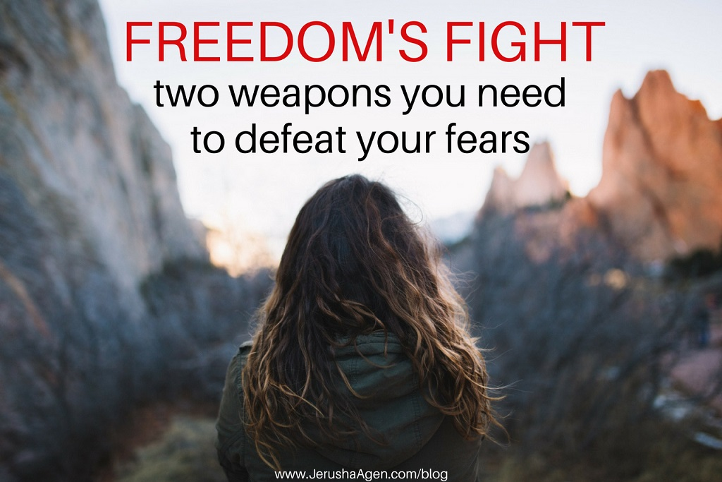Freedoms-Fight-blog-title-graphic-1(resize80perentJPG)