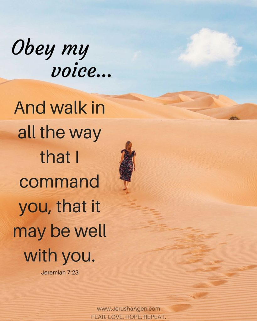 obey-my-voice-graphic(resize50percentJPG)