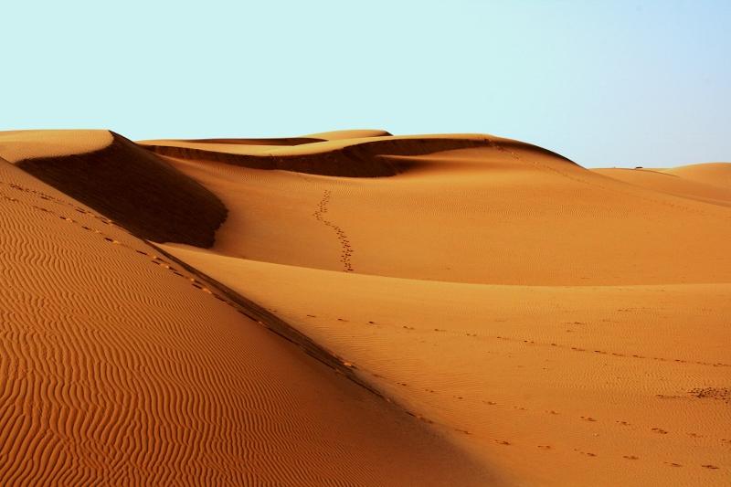 desert-sand (800x533)